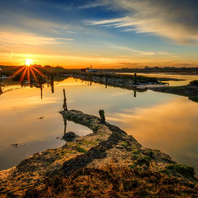 """Last Moments on The Backwater Coastline"" stock image"