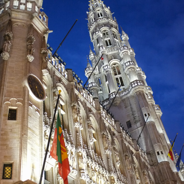 """""""City hall of Brussels"""" stock image"""