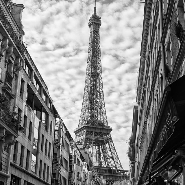 """Eiffel Tower in B&W"" stock image"