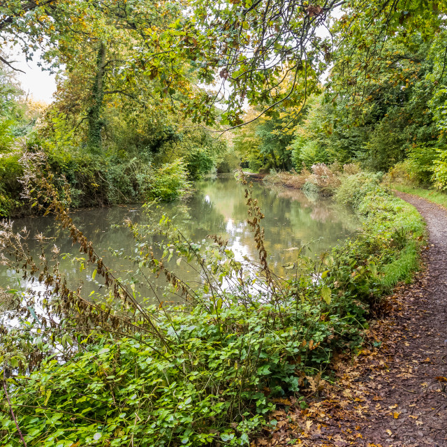 """Canal in Autumn"" stock image"
