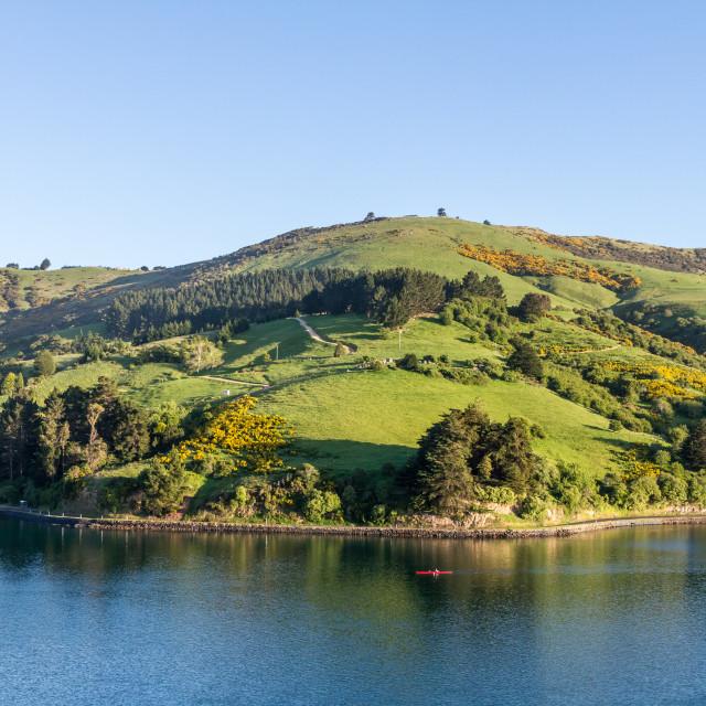 """Otago Harbour, Dunedin, New Zealand"" stock image"