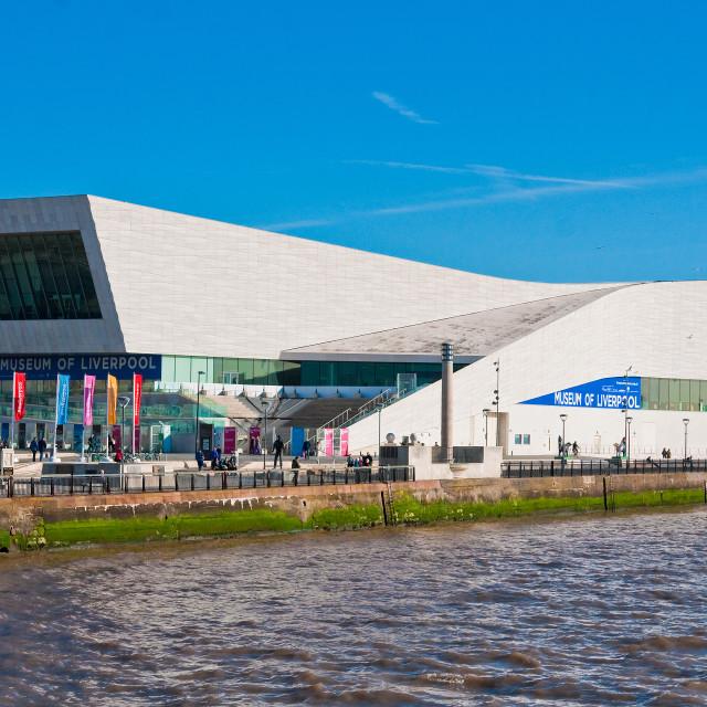 """Liverpool's Museum"" stock image"