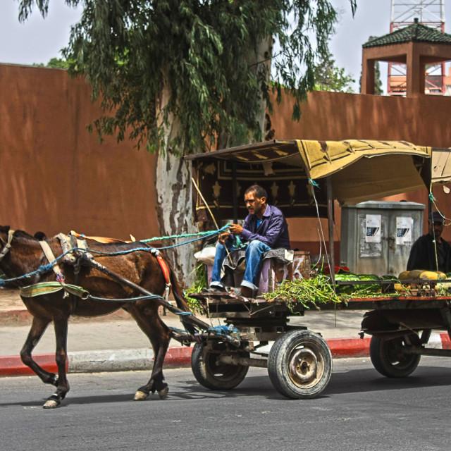 """marrakech trader"" stock image"