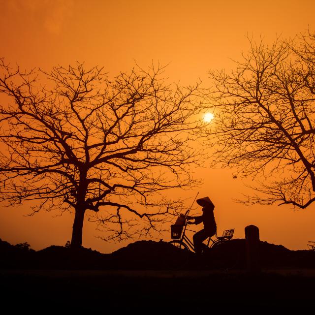"""women going home silhouette at Hanoi"" stock image"