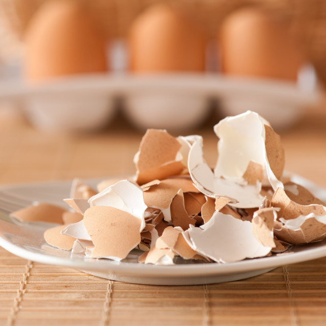 """""""Crushed egg shells on plate"""" stock image"""