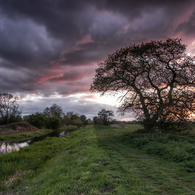 """Pocklington Canal Sunset 2"" stock image"