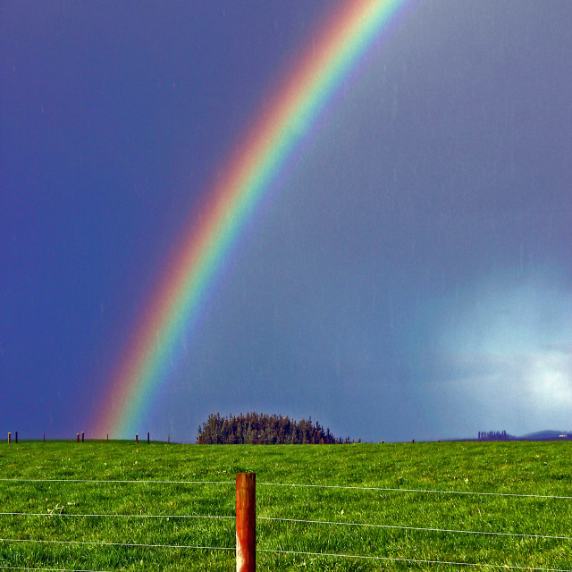 """""""The rainbow and the wood"""" stock image"""