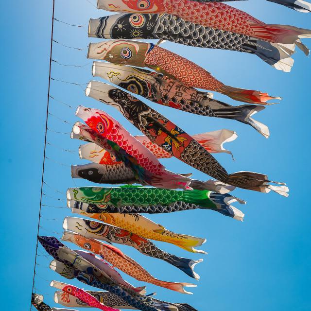 """Koinobori Festival 2"" stock image"