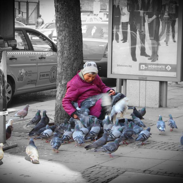 """Bulgarian Grandmother"" stock image"