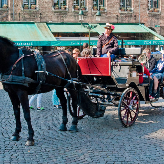 """""""Horse and Carriage, Bruges"""" stock image"""
