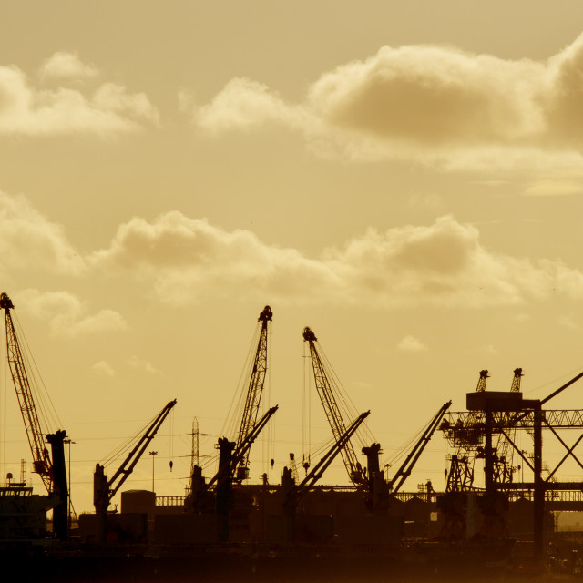 """Cranes at Tyneside"" stock image"