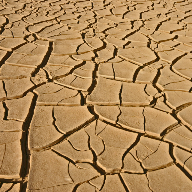 """""""Drought"""" stock image"""