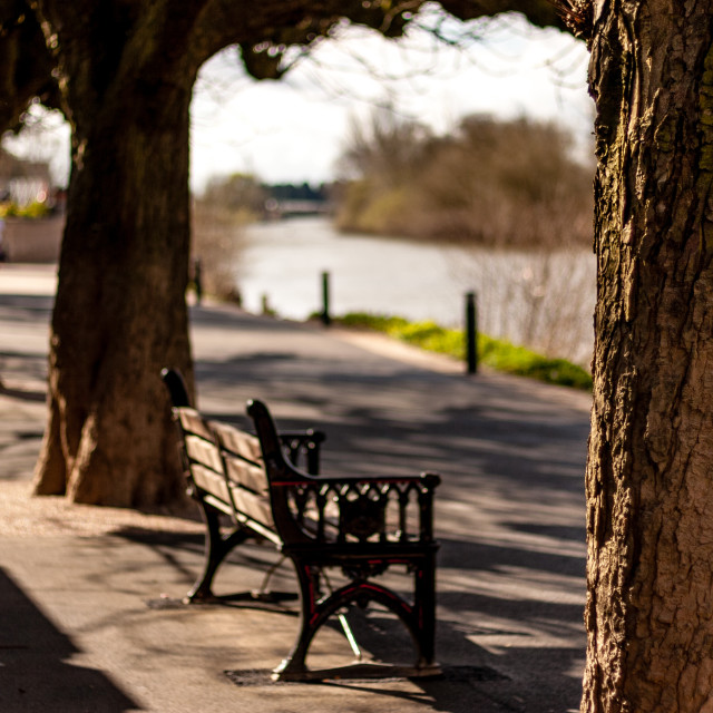 """""""Lonely Bench"""" stock image"""