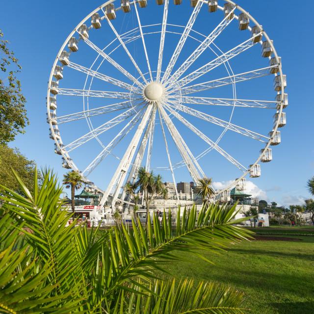 """The Riviera Wheel - Torquay"" stock image"