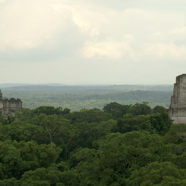 """""""Tikal Temples, Guatemala"""" stock image"""