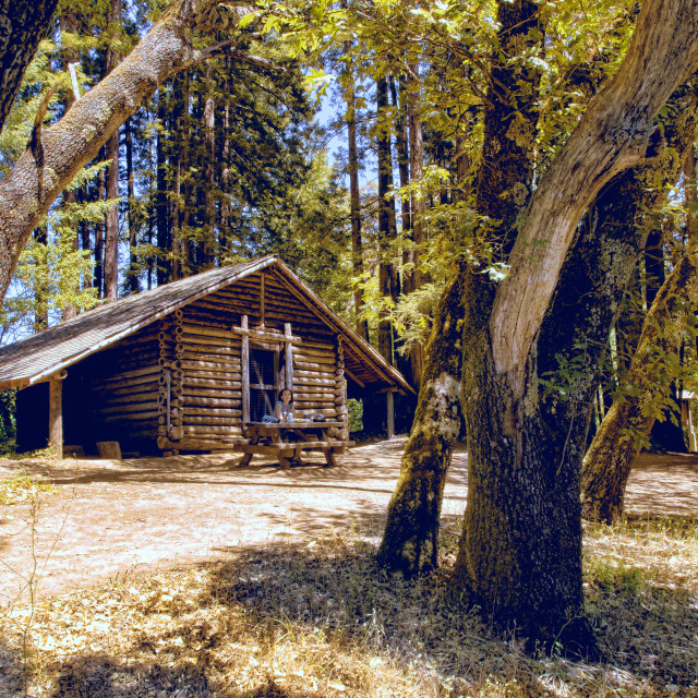 """wooden cabin with a picnic table"" stock image"
