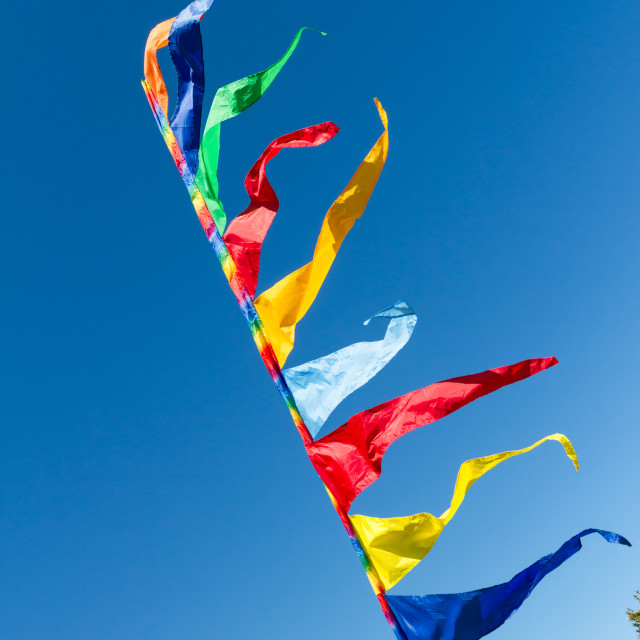 """Coloured flags flying"" stock image"