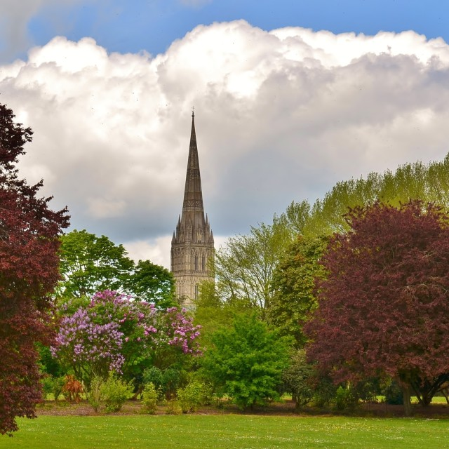"""""""A Spire Above."""" stock image"""