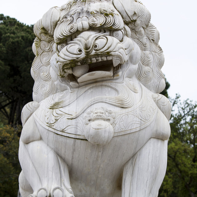 """""""beautiful lion statue on a park"""" stock image"""
