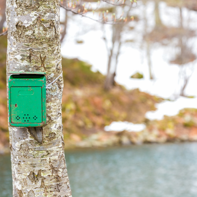 """the old green mailbox"" stock image"