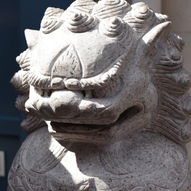 """""""Stoney Lion"""" stock image"""