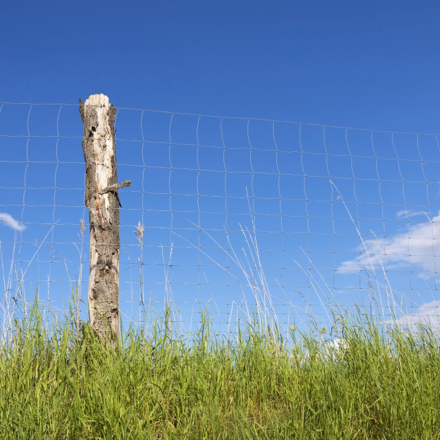 """Fence in Front of Blue Sky"" stock image"