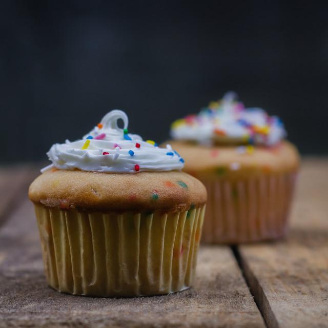 """Vanilla cupcakes"" stock image"