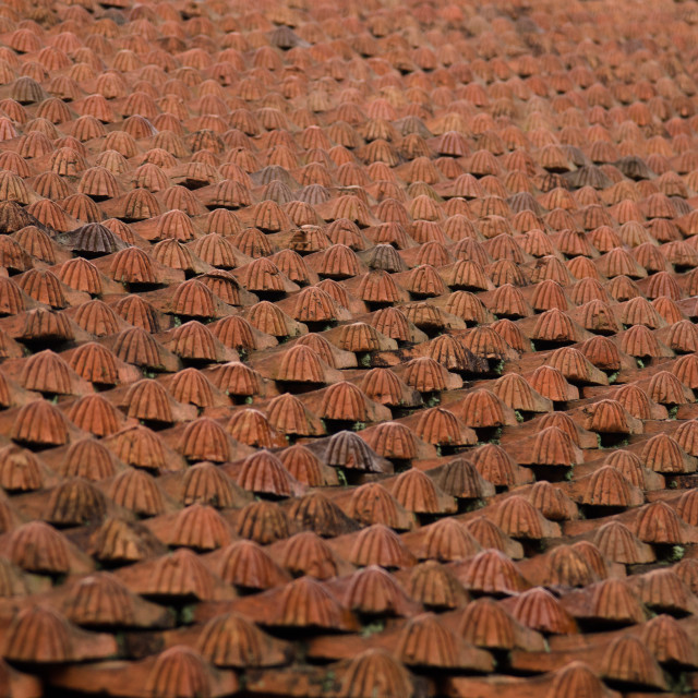 """Roof Tiles, 4"" stock image"