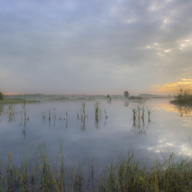 """""""Boora Lake."""" stock image"""