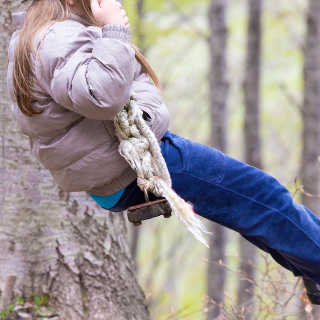 """""""on the swings in the woods"""" stock image"""