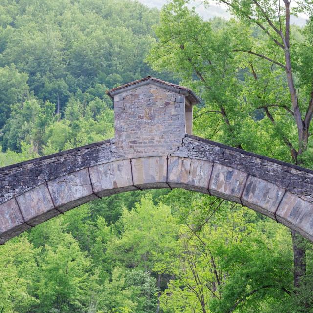 """old bridge through the trees"" stock image"