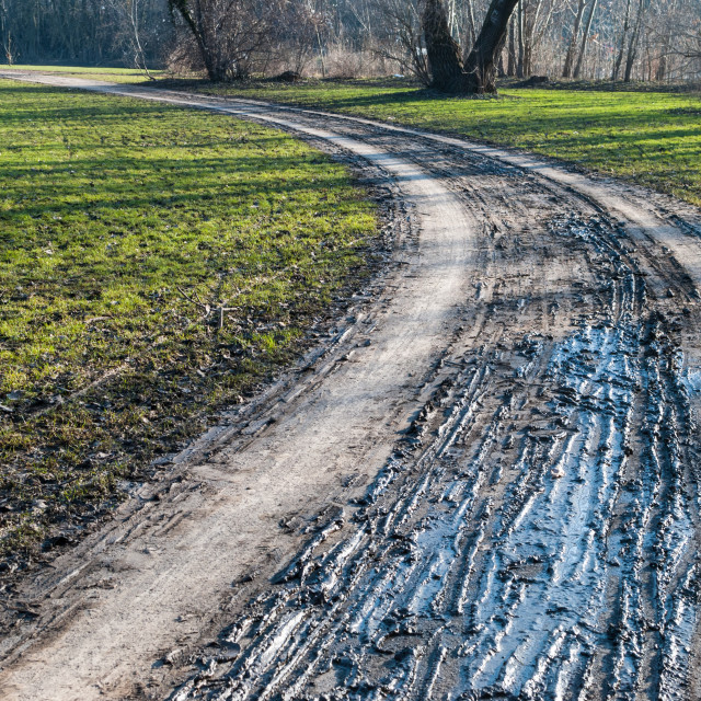 """Muddy Road In Late Winter"" stock image"