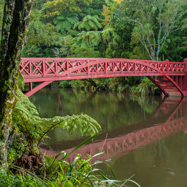 """Poet's Bridge - Pukekura Park, New Plymouth"" stock image"