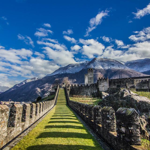 """Bellinzoza castle"" stock image"