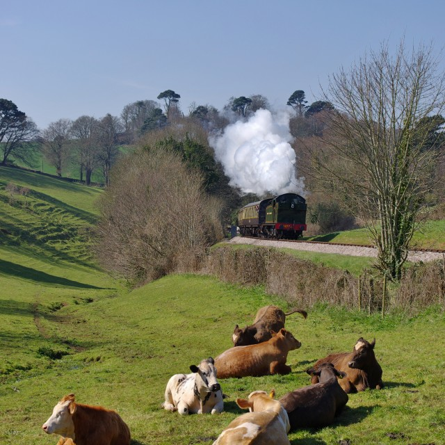 """Great Western Steam Locomotive"" stock image"