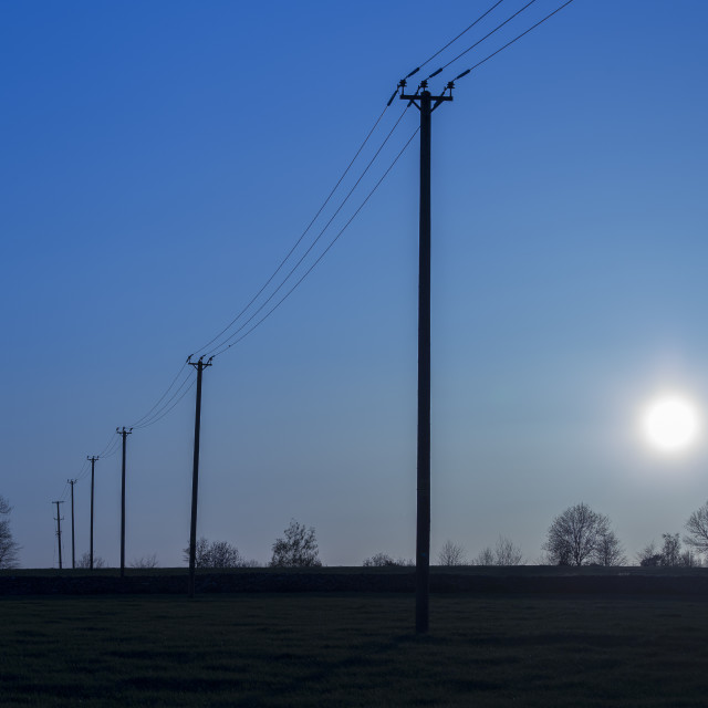 """Electricty poles in cool blue evening light"" stock image"