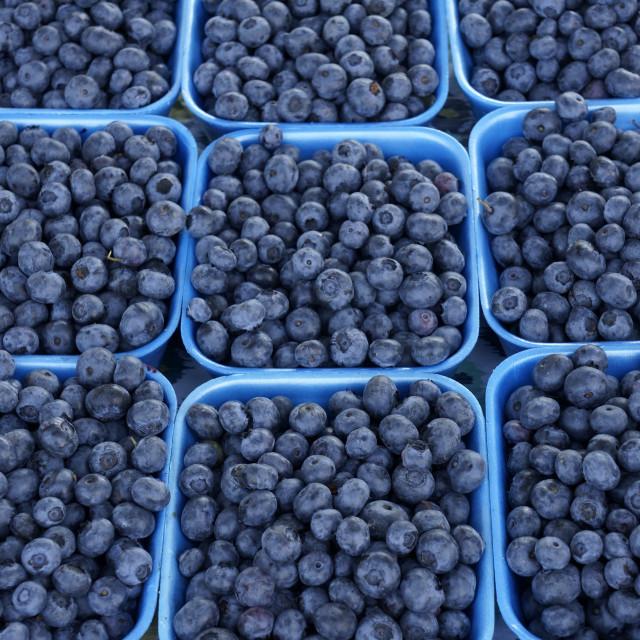 """""""Fresh blueberries"""" stock image"""