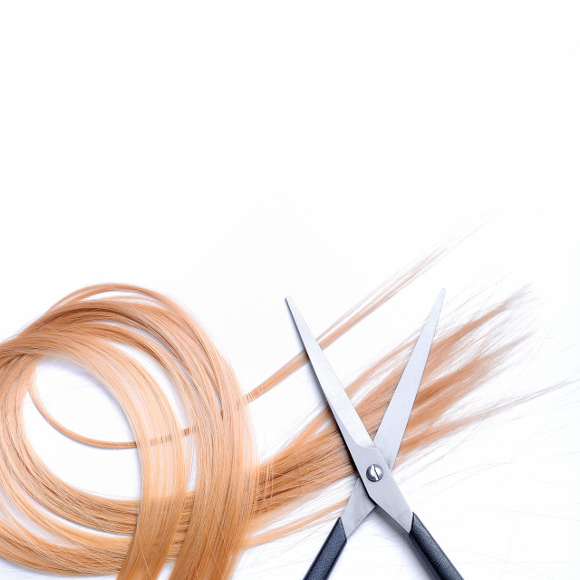 """""""Barber scissors with lock of blonde hair isolated"""" stock image"""