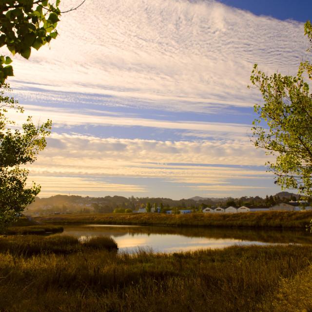 """Morning landscape"" stock image"