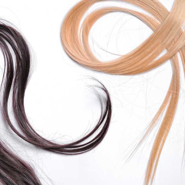 """""""Tufts of brown and blond straight hair"""" stock image"""
