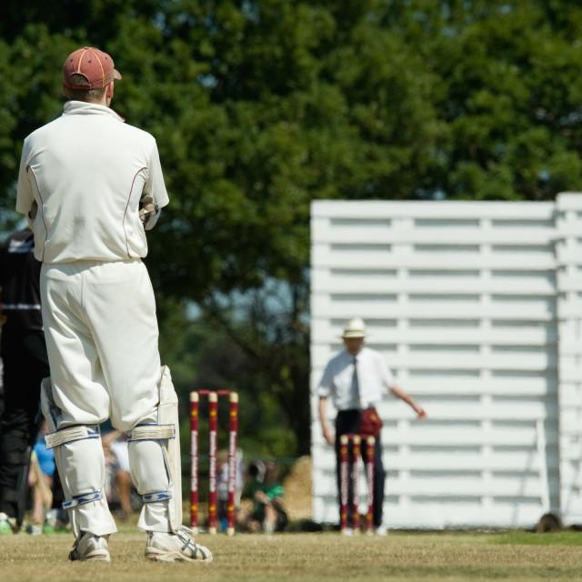 """""""english cricket"""" stock image"""