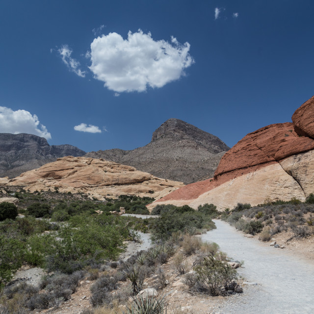 """Redrock Landscape"" stock image"