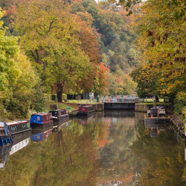 """Cookham Lock"" stock image"