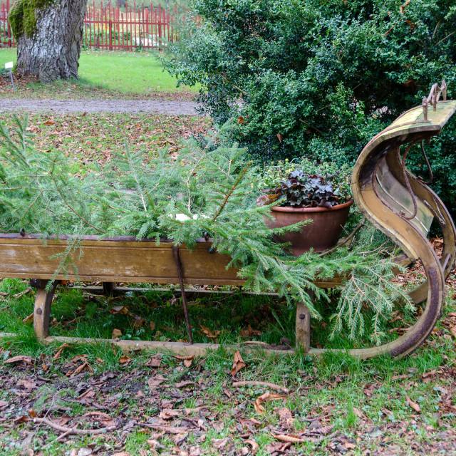 """one sleigh"" stock image"