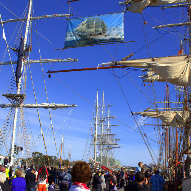"""""""Tall ships gather"""" stock image"""