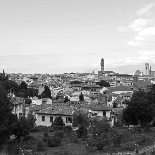 """Florence"" stock image"