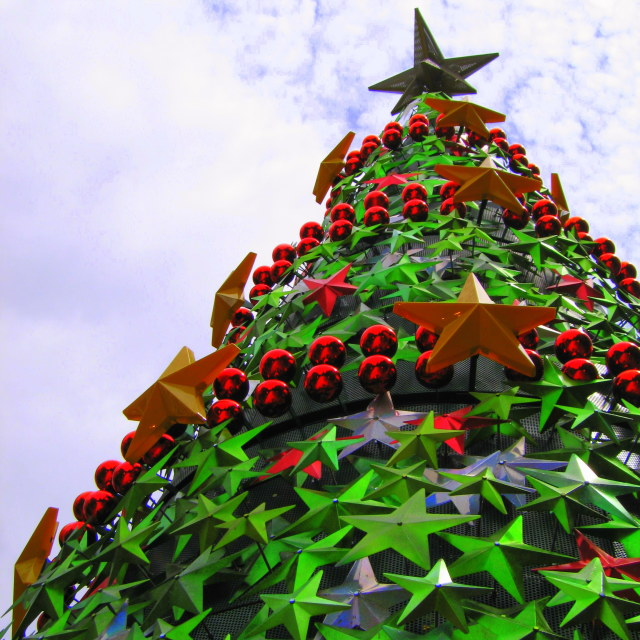 """""""christmas tree oh Xmas tree"""" stock image"""