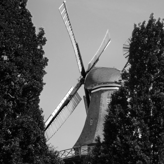 """""""Windmill is hiding"""" stock image"""