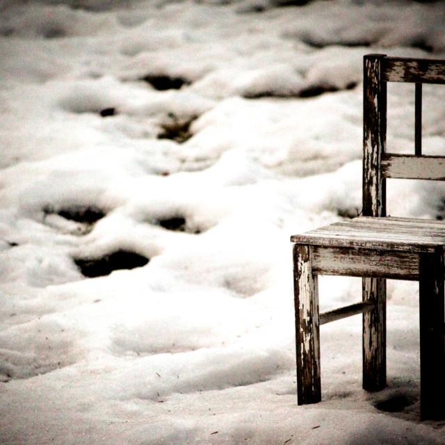 """""""Chair in Wintergarden"""" stock image"""