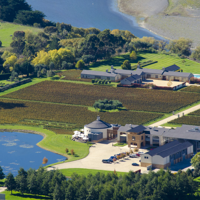 """""""Bird's Eye View of a Winery - Hawkes Bay, New Zealand"""" stock image"""